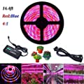 Lahoku Led Plant Grow Strip Light 16 4ft Smd 5050 Waterproof Full Spectrum Red Blue 4 1 Rope Strip Grow Light With Power Adapter For Greenhouse Hydroponic Plant 5m