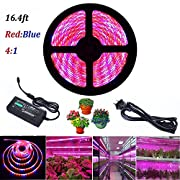 Lahoku LED Plant Grow Strip Light 16.4ft SMD 5050 Waterproof Full Spectrum Red Blue 4:1 Rope Strip Grow Light with Power Adapter for Greenhouse Hydroponic Plant (5M)