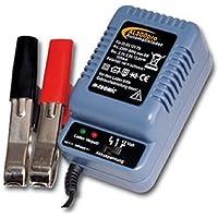 Accu-automatische lader AL 300 pro f. 2-6-12V batterijen