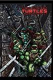 Teenage Mutant Ninja Turtles: The Ultimate B&W Collection Vol. 4