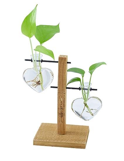 Potted plant Planta De Agua Rábano Verde Botella De Vidrio Hidropónica En Maceta Sala De Estar