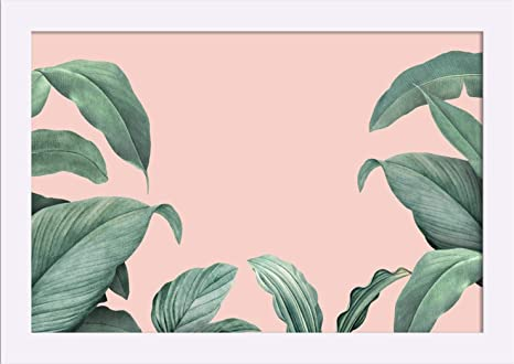 Amazon Com Green Tropical Leaves Frame On Pink Background A 9014445 18x12 Giclee Art Print Gallery Framed White Wood Posters Prints Big foliage will add dramatic flair while smaller, more dracaena marginata is notable for its long, narrow leaves and slender, woody stems. amazon com green tropical leaves frame
