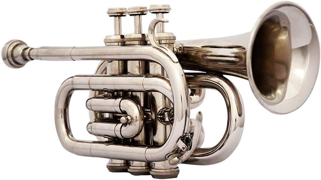 Mejor Estimada BB Pitch trompeta Pocket con estuche y boquilla, Plata patrón de Nasir Ali: Amazon.es: Instrumentos musicales