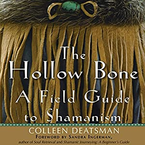 The Hollow Bone Audiobook