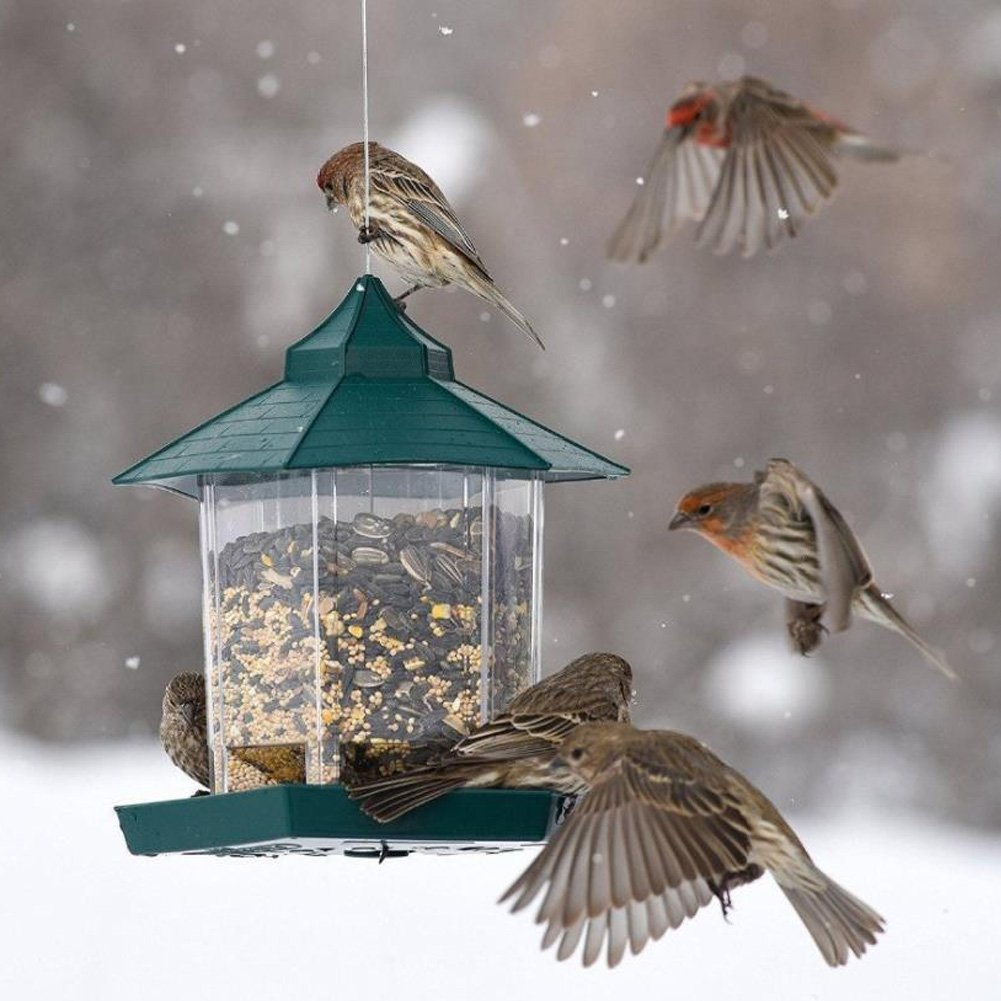 LvLoFit Weather Proof No Mess Hanging Bird Feeder Tray Large Box Seed Nut Grain for Wild Garden Home Animal Accessories