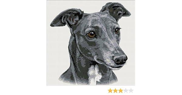 Amazon Greyhound No2 Counted Cross Stitch Kit