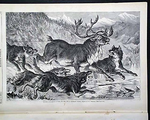 Harper's WEEKLY, March 7, 1868 - Peru, Dog-pulled Sleigh, House of Representatives, New York-themed prints ()