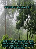 Soothing Rainfall in Forest Environment for Relaxing Sleep,Yoga, and Meditation with calming white noise