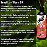 Happy Horse Neem Oil, 100% Cold Pressed and