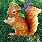 Accreate Creative Outdoor Resin Squirrel Figurine Simulation Animal Artwork as Garden&Park Decor (1314)