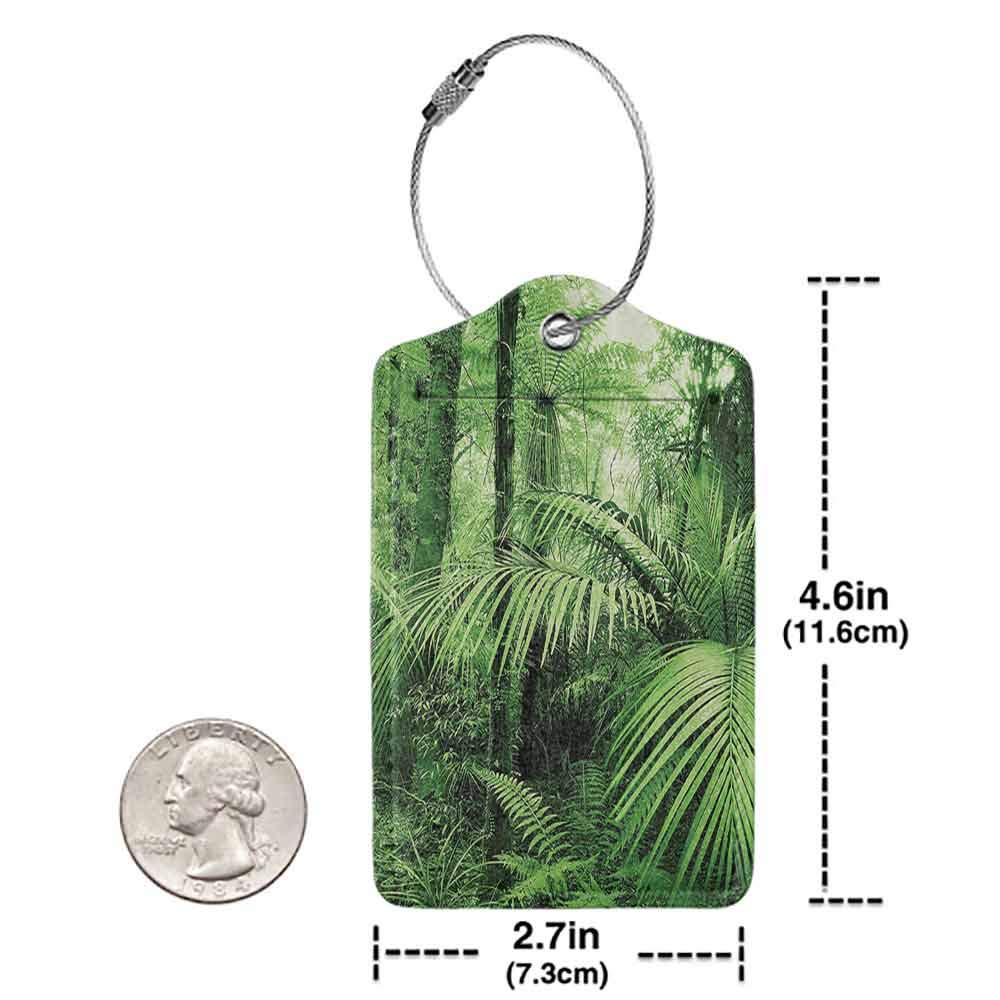 Personalized luggage tag Rainforest Decorations Palm Trees and Exotic Plants in Tropical Jungle Wild Nature Zen Theme Illustration Easy to carry Green W2.7 x L4.6