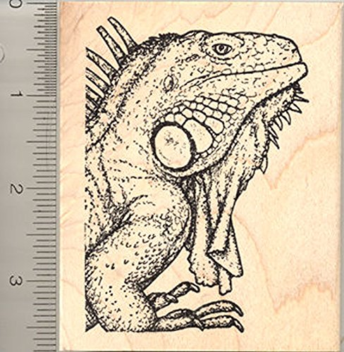Iguana Rubber Stamp