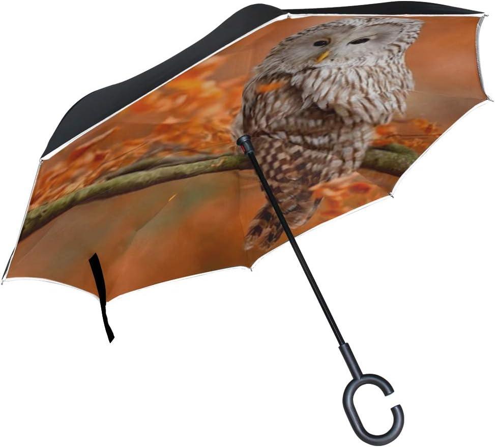 Double Layer Inverted Inverted Umbrella Is Light And Sturdy Autumn Nature Owl Ural Strix Uralensis Reverse Umbrella And Windproof Umbrella Edge Night