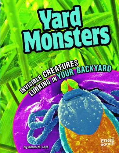 Yard Monsters; Invisible Creatures Lurking in Your Backyard (Tiny Creepy Creatures)