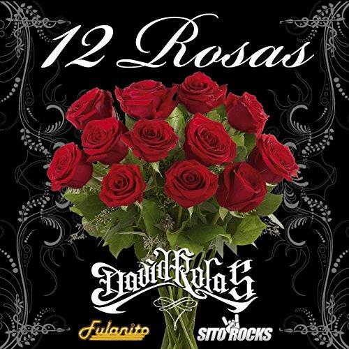 Amazon.com: 12 Rosas (feat. Fulanito & Sito Rocks): David Rolas: MP3