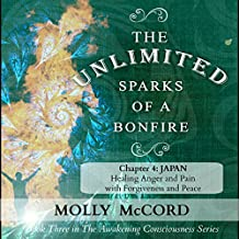The Unlimited Sparks of a Bonfire, Chapter 4: Japan: Healing Anger and Pain with Forgiveness and Peace