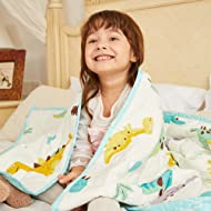 Hiseeme Weighted Blanket for Kids (7lbs, 41''x60'', Single Size) Small Pockets - Breathable Cotton with Glass Beads (Dinosaur)