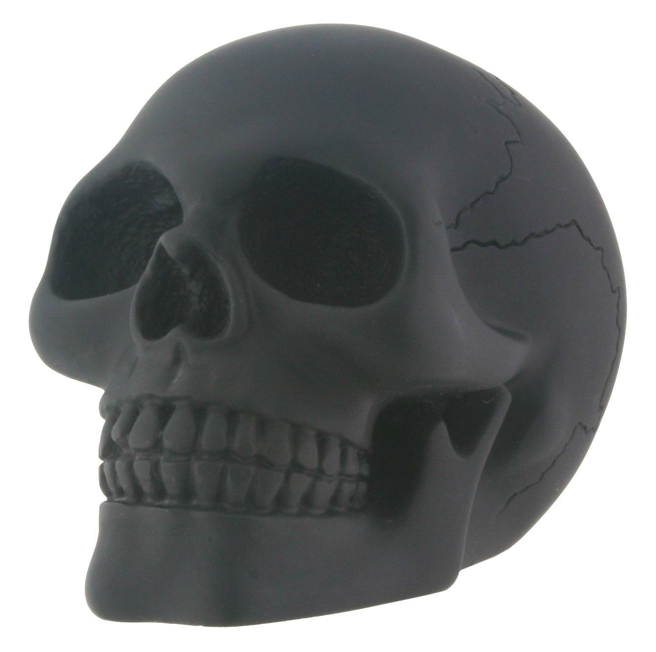 Black Skull Head Collectible Skeleton Decoration Figurine