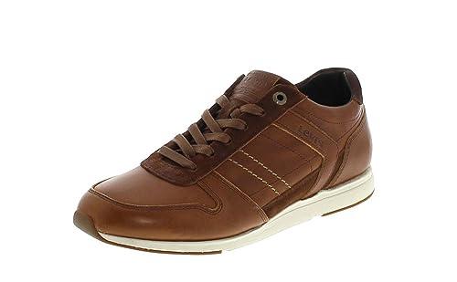 Amazon shoes Levi's Marroni Bristol Levi's Bristol Amazon D92YWHEI