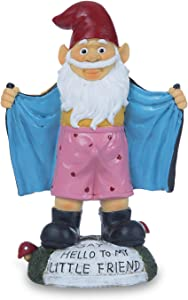 Jy.Cozy Garden Gnome Figurines Funny Statues Outdoor Decorations Resin Home Yard Patio Full Color 9.1 Inch Tall
