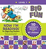 Best Learning How To Read Books - Now I'm Reading! Level 1: Big Fun Review