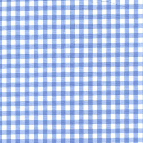 Blue Gingham Check Fabric (1/4