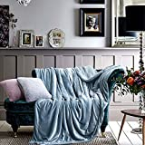 TiTa-Dong Luxurious Plush Sherpa Blanket Throws Flannel Sheets Thicken Fleece Soft Cozy Reversible Fuzzy Sofa Couch Throws Baby Blankets for Single , Twin , Full Size Bed