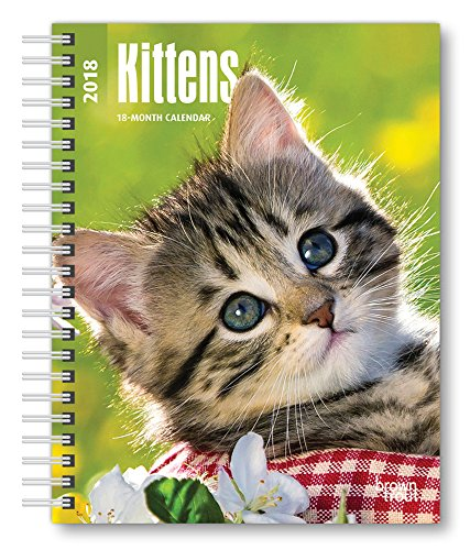 Kittens 2018 6 x 7.75 Inch Weekly Engagement Calendar, Animals Kittens