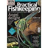 PFK Practical Fishkeeping Magazine Issue 9 September 2018 Mag Stingray Angels Gobies