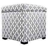 MJL Furniture Designs Tami Collection Fabric Upholstered Lift Top Storage Foot Rest Cube Ottoman, Fulton Series, Storm