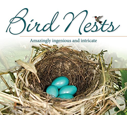 Bird Nests: Amazingly Ingenious and Intricate (Bird Appreciation)