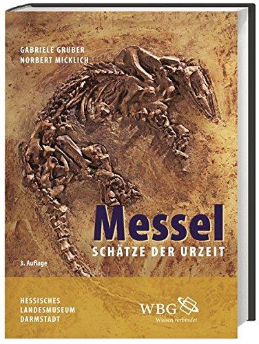 Messel: Schätze der Urzeit