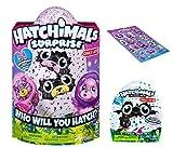 Hatchimals Surprise Ligull Hatching Egg w/Surprise Twin + BONUS CollEGGtible Bearakeet Blind Bag (Season 2) On Sale