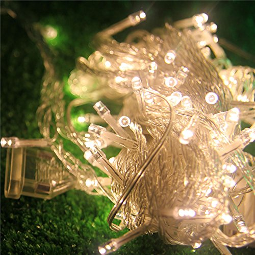 YueQin 33ft 100 LED String Lights Dimmable Control For Bedroom, Patio, Garden,Gate, Yard, Parties, Wedding (Copper Wire Lights, Warm White,Transparent LED Lights)