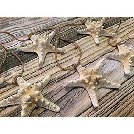 61wKEMWaIZL._SS450_ Beachy Starfish and Seashell Garlands