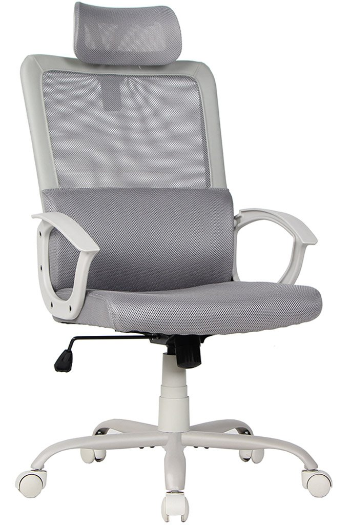 Bonum 26.75'' High Back Mesh Executive Office Chair with Padded Lumbar Support, Gray