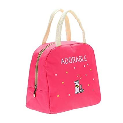 Buy MAX HOME® Portable Insulated Oxford Lunch Bag Thermal Food Picnic Lunch  Bags for Women Kids Men Cooler Lunch Box Bag (1 Pcs Color May Vary) Online  at ... a887c4ba265e9