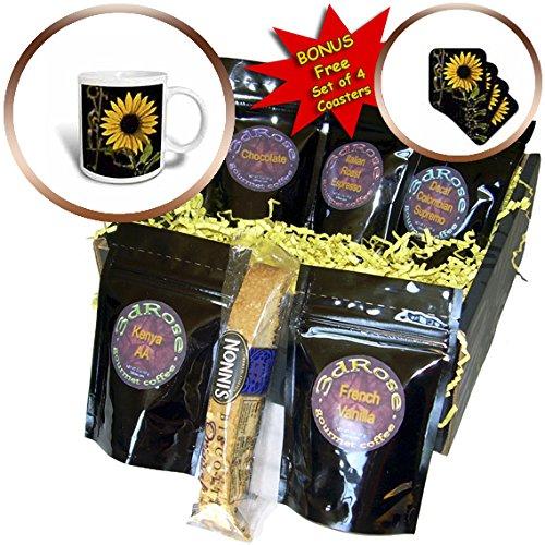 3dRose Danita Delimont - Santa Fe - New Mexico, Santa Fe. Backlit sunflower - Coffee Gift Baskets - Coffee Gift Basket (cgb_251220_1)