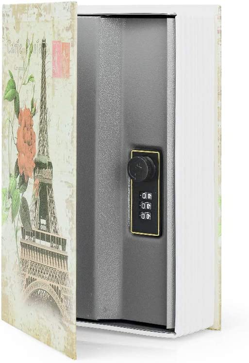 Diversion Book Safe Storage Box, Dictionary Secret Safe Can with Security Combination Lock/Key, Diversion Book Hidden Safe (Paris, M,Combination)