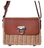Hycurey Retro Straw Purse and Handbag Small Box Woven Womens Summer Beach Cross Body Bag Shoulder Messenger Satchel Brown
