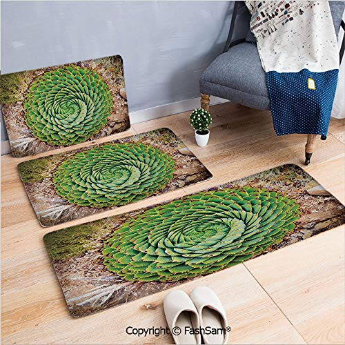 3 Piece Flannel Bath Carpet Non Slip National Flower of Lesotho South of Africa Aloe Polyphylla Spinning Spiral Aloe Vera Front Door Mats Rugs for Home(W15.7xL23.6 by W19.6xL31.5 by W17.7xL53)