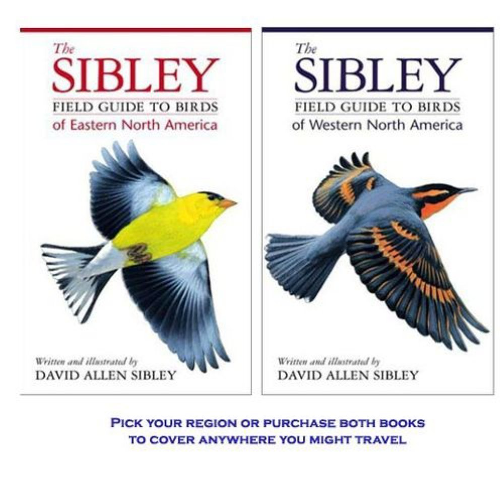 The Sibley Field Guide to Birds of Eastern North America by Random House