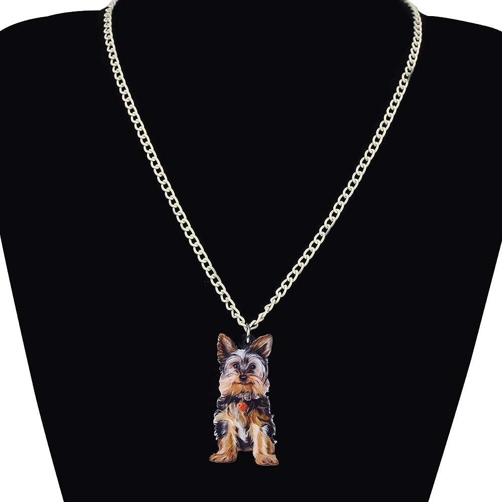 DUOWEI Alloy Metal Enamel Flying Hummingbird Necklace Novelty Animals Pendant Fancy Gifts for Women Teens