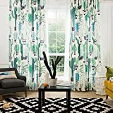 KARUILU home Window Curtain with Succulent Garden (52W x 84L, Cacti Party) Review