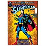 Silver Buffalo SP1336 DC Comics Silver Buffalo Superman Breaking Chains V Wood Wall Art, 13 x 19 inches