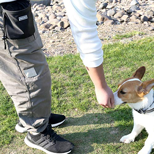 61wL f90y0L. SS500  - Dog Treat Bag Hands-Free Puppy Training Pouch