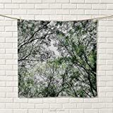 smallbeefly Nature Hand Towel Tree Branch in Spring Season Fairy Jungle Growth Nature Look Up Wood Scene Photo Print Quick-Dry Towels Green Size: W 20'' x L 24''