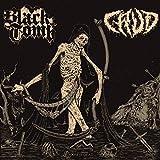 Doom Is Dead (12