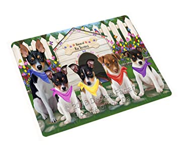 2fe9320f4d Amazon.com  Spring Dog House Rat Terriers Dog Blanket BLNKT67854 ...
