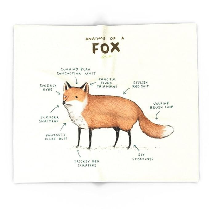 Amazon Society6 Anatomy Of A Fox 51 X 60 Blanket Sophie